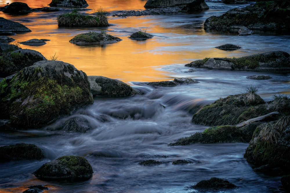 rocky shore with green moss and rocks during sunset