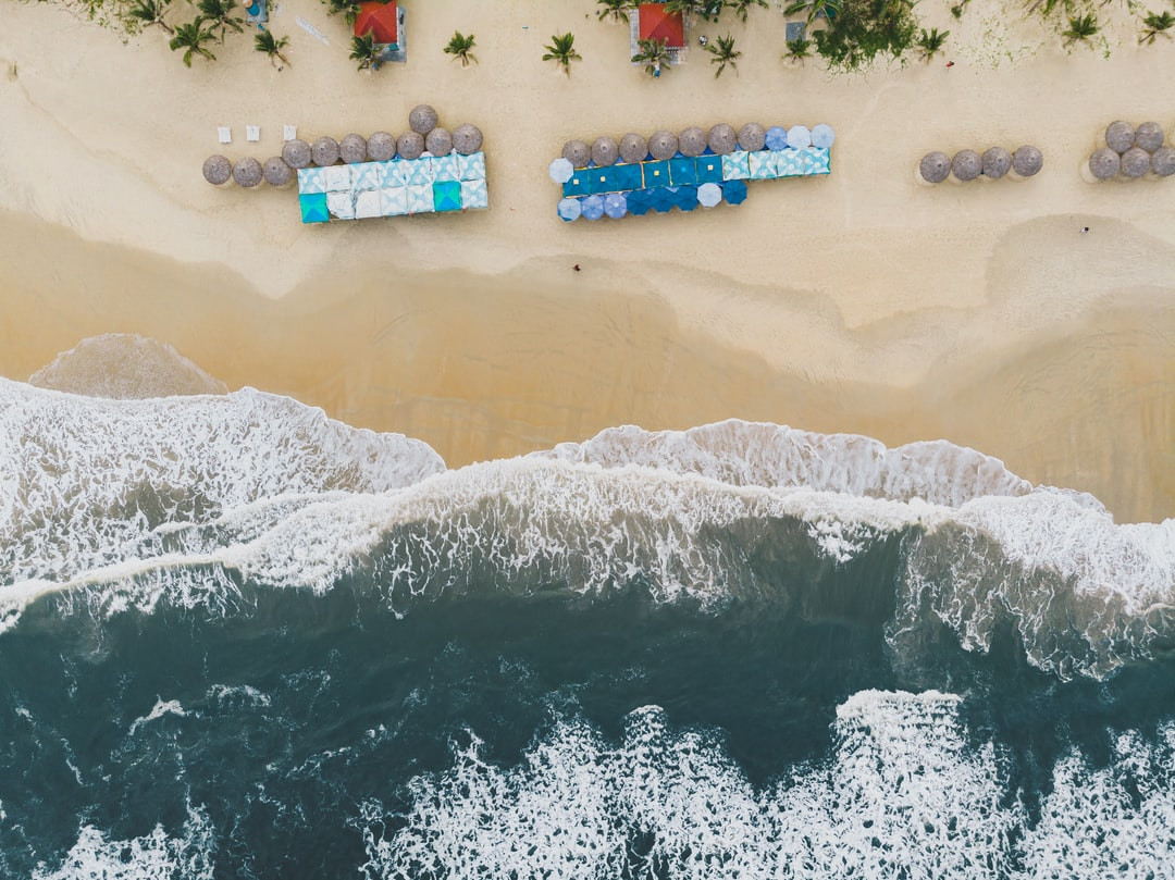 Aerial View of People On Beach During Daytime - unsplash