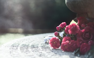 flower bouquet roses on concentration camp Flossenbürg memorial site