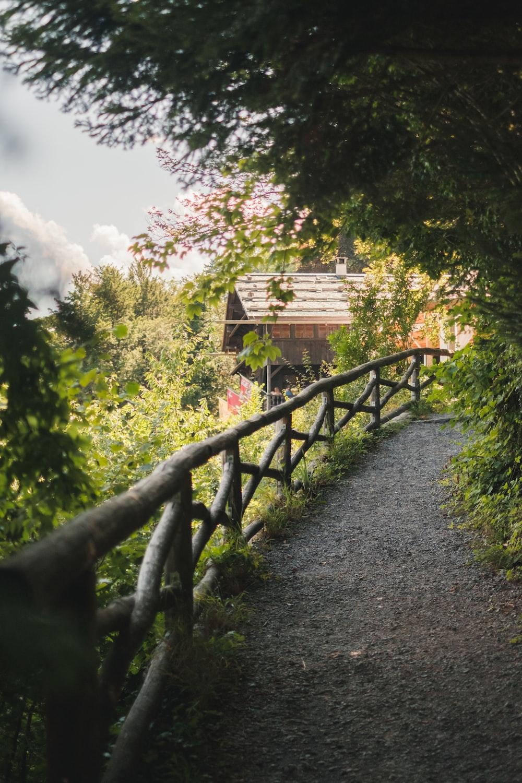 brown wooden bridge over green trees