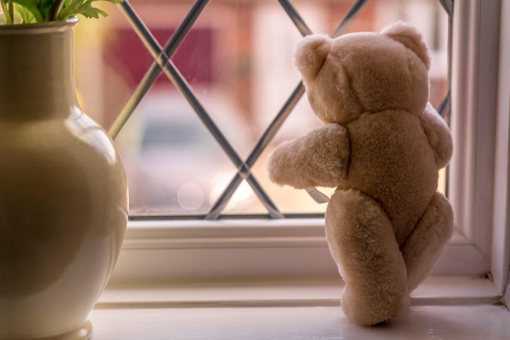 brown bear plush toy on window