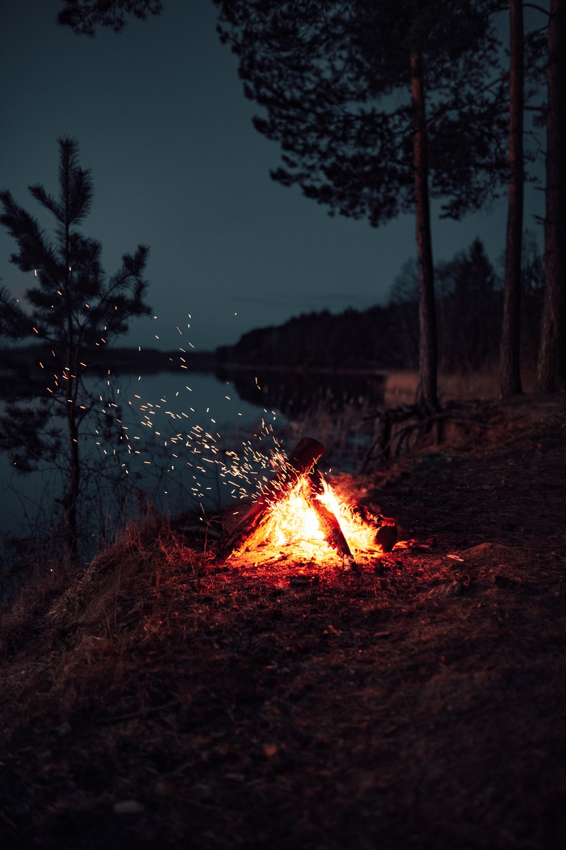 bonfire near lake during night time