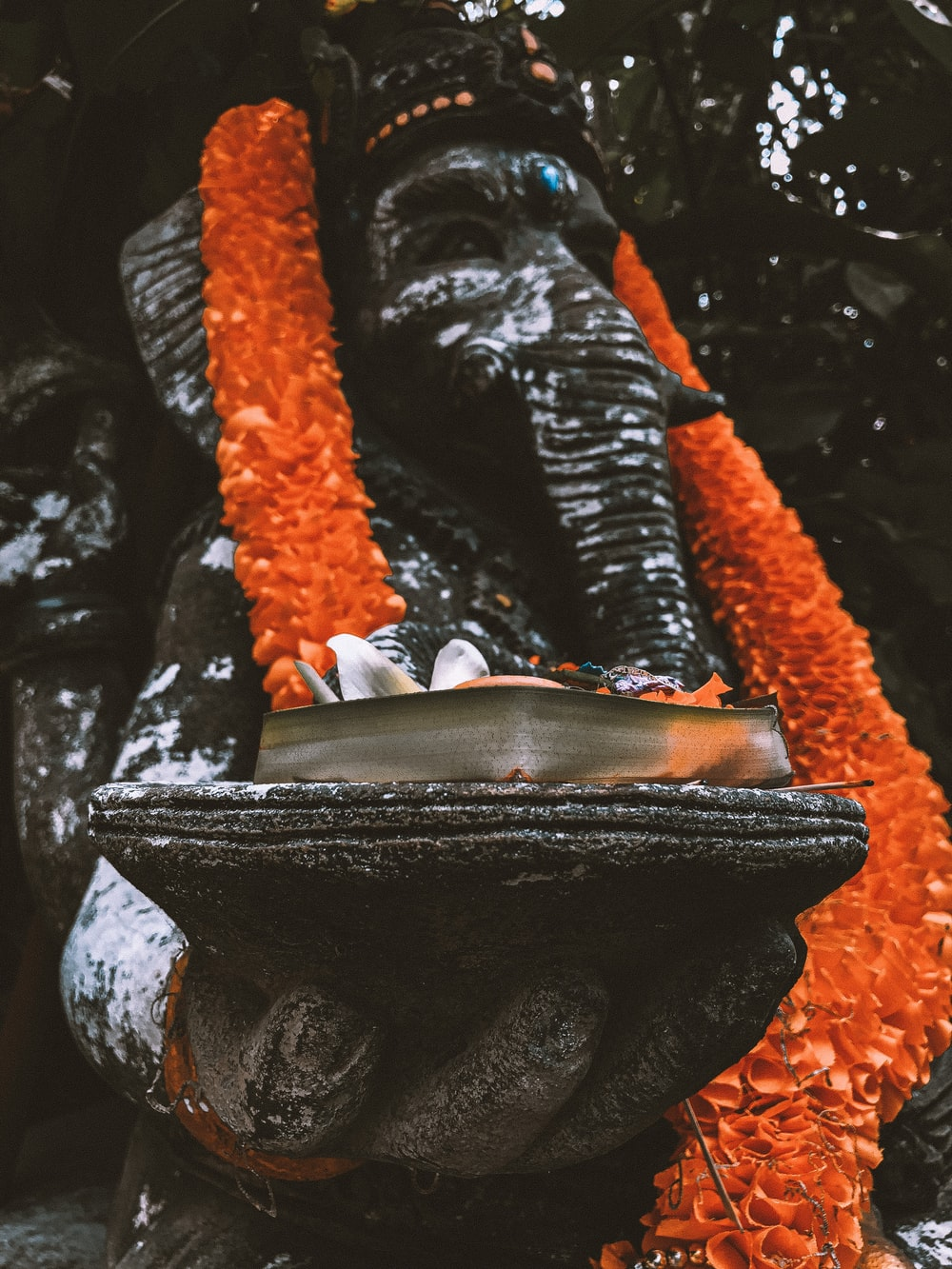 orange and black rope on black and gray rock