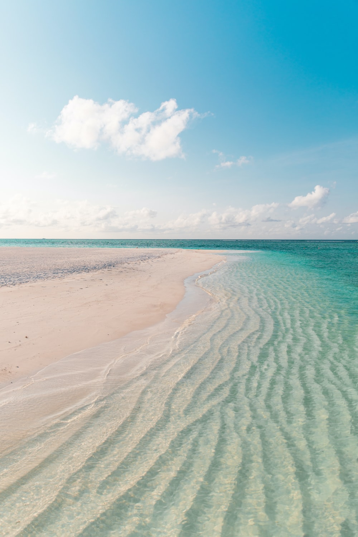 white sand beach during daytime