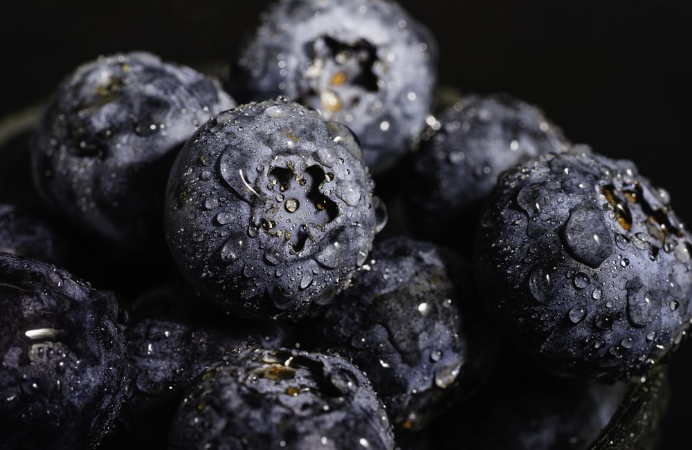 black berries in close up photography
