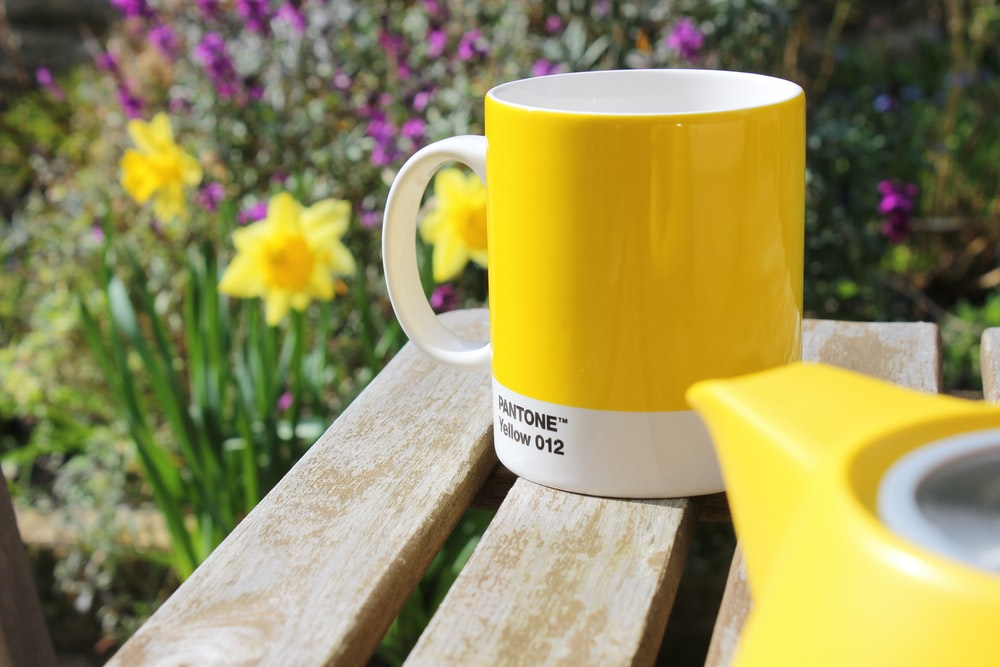 yellow ceramic mug on brown wooden bench
