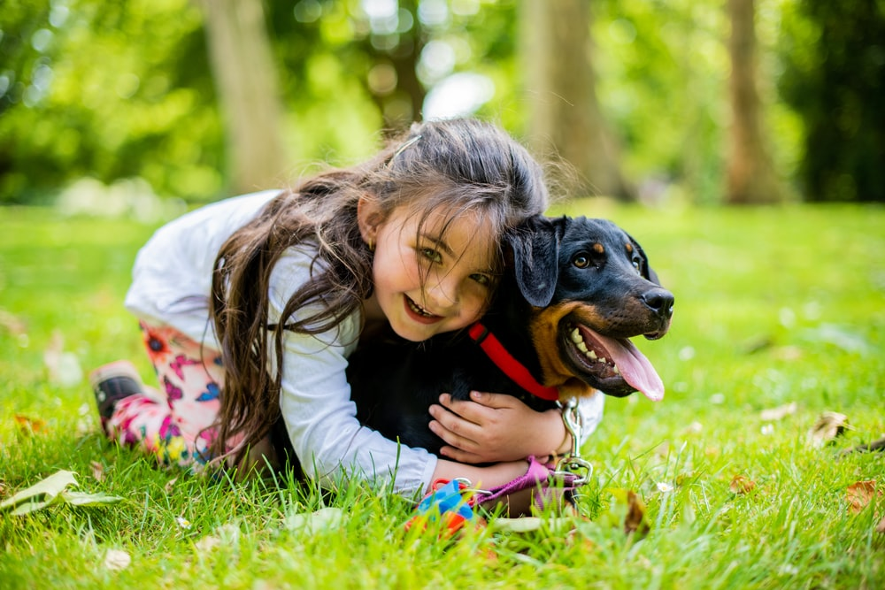 girl in pink jacket playing with black and brown short coated dog on green grass field