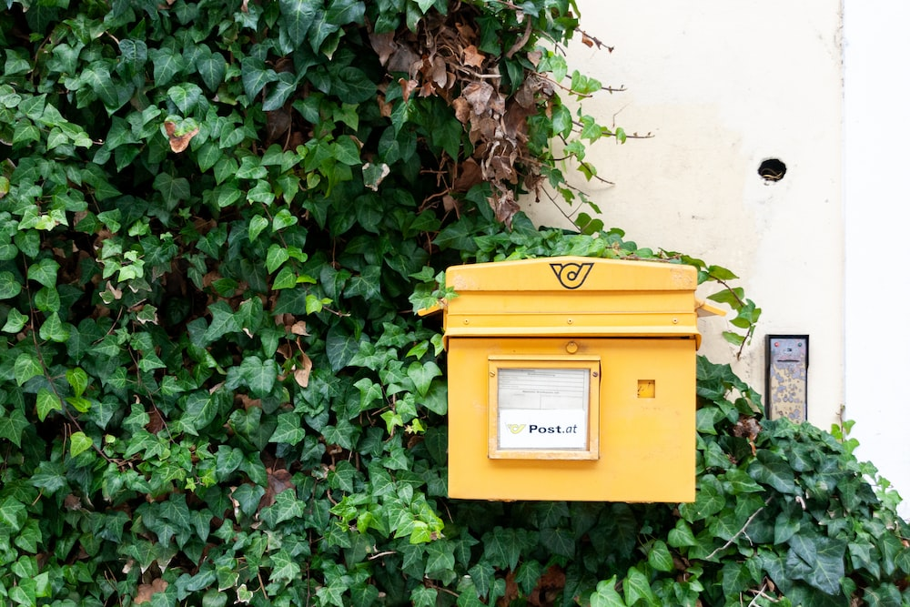 yellow mail box on green plant