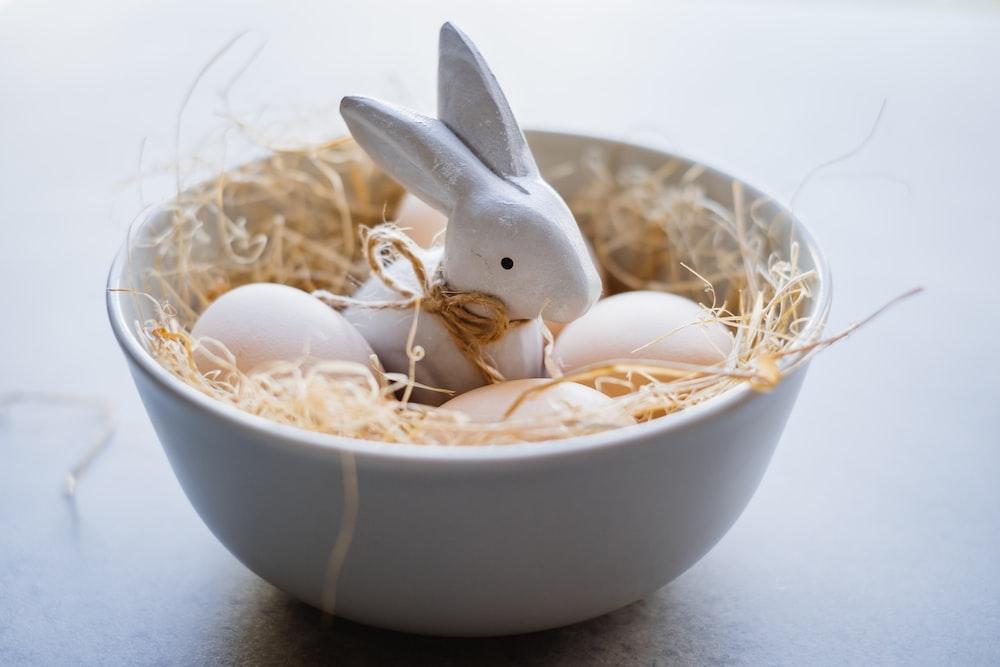 white rabbit in white ceramic bowl