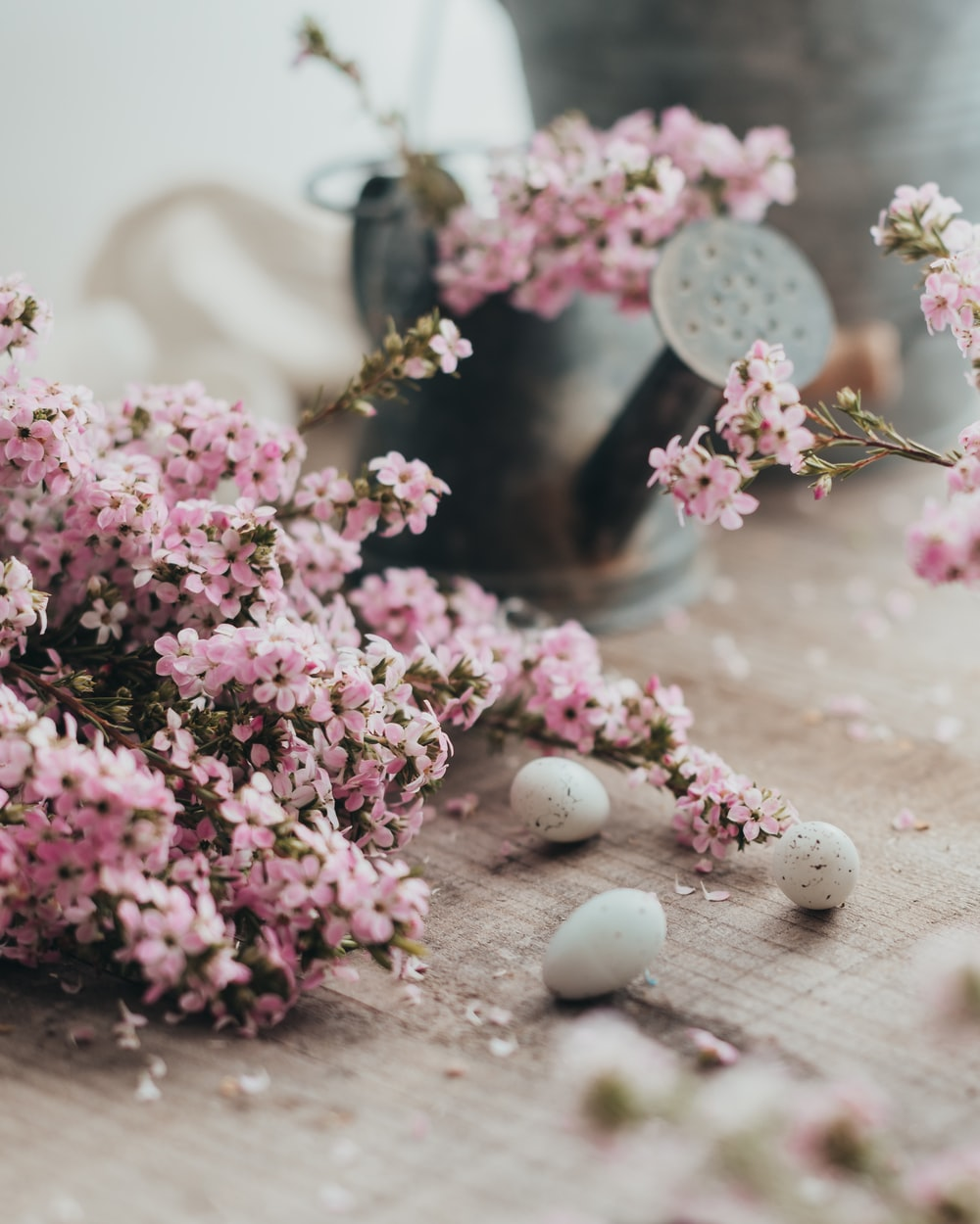 pink and white flowers on clear glass jar