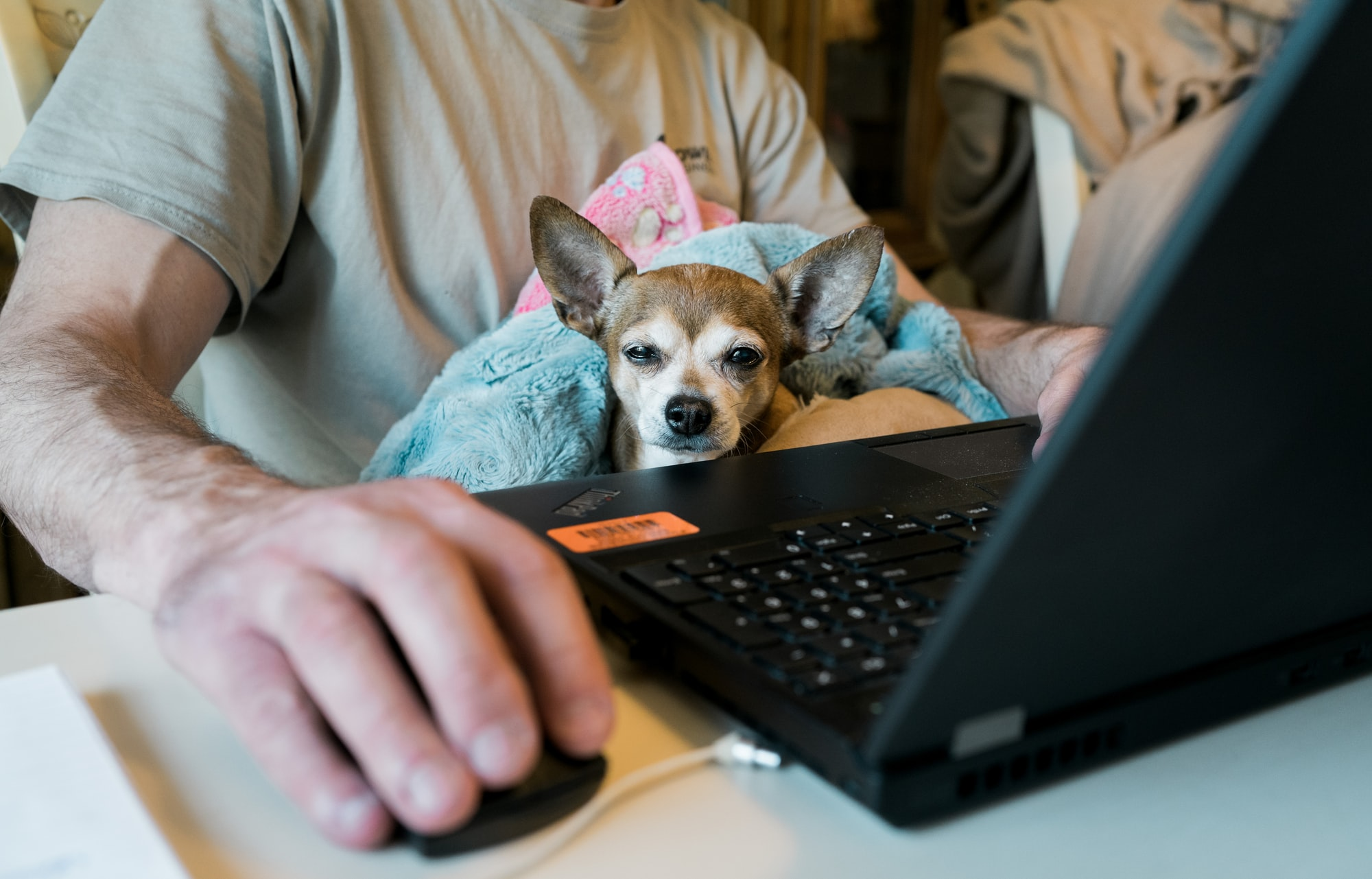 The Micromanager: Working from home under the scrutinizing eye of the watchdog