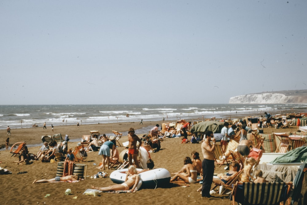 people sitting on beach shore during daytime