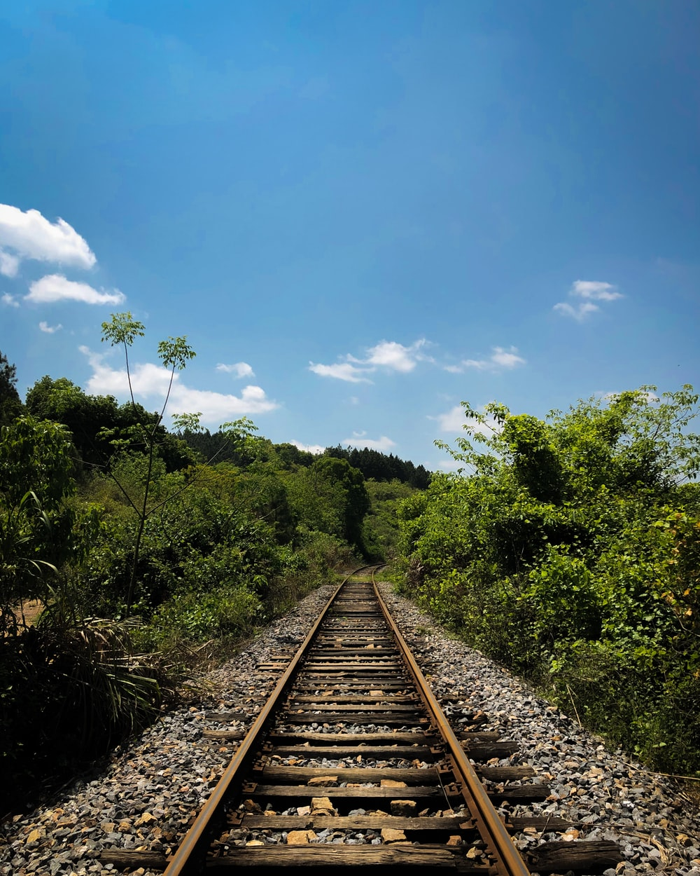 brown metal train rail near green trees under blue sky and white clouds during daytime