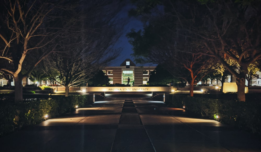 brown bare trees near brown house during night time