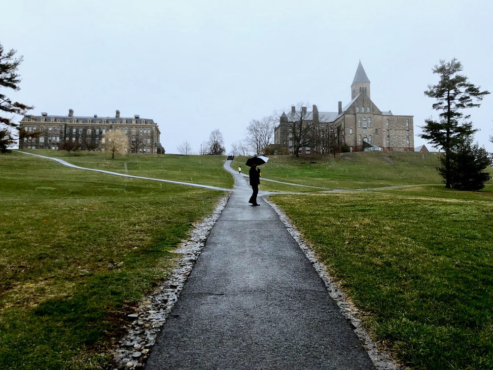 person walking on pathway near green grass field during daytime