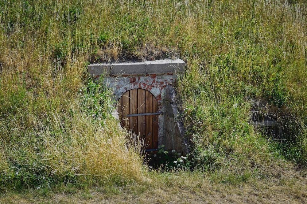 brown wooden door on green grass field