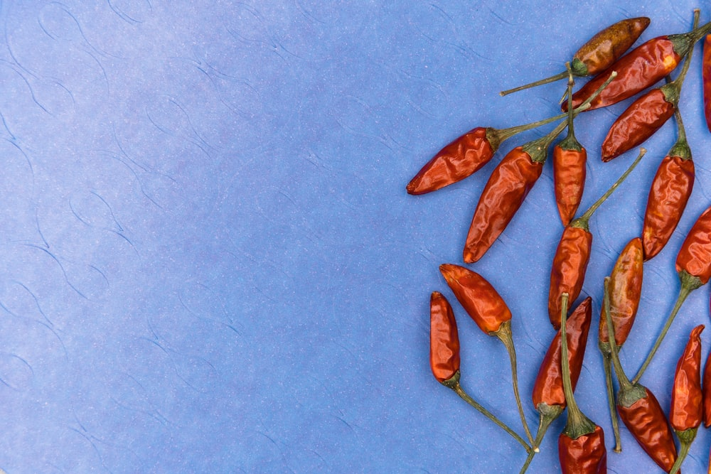 red leaves on blue textile