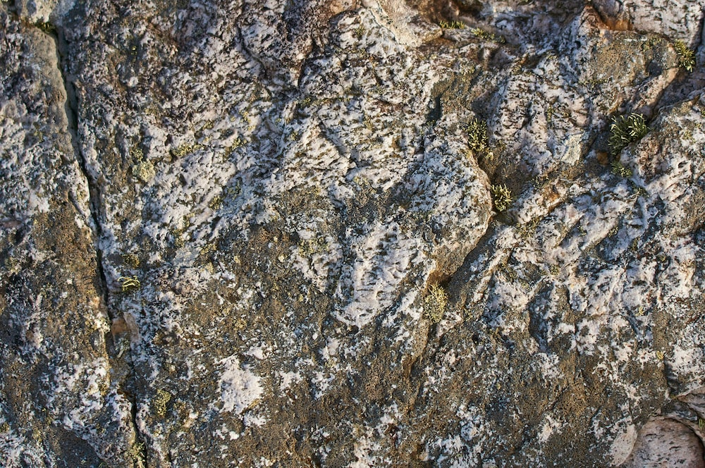 gray and brown rock formation
