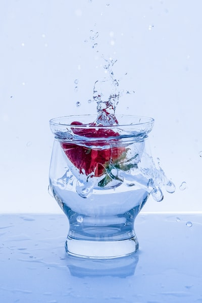 red rose in water with water