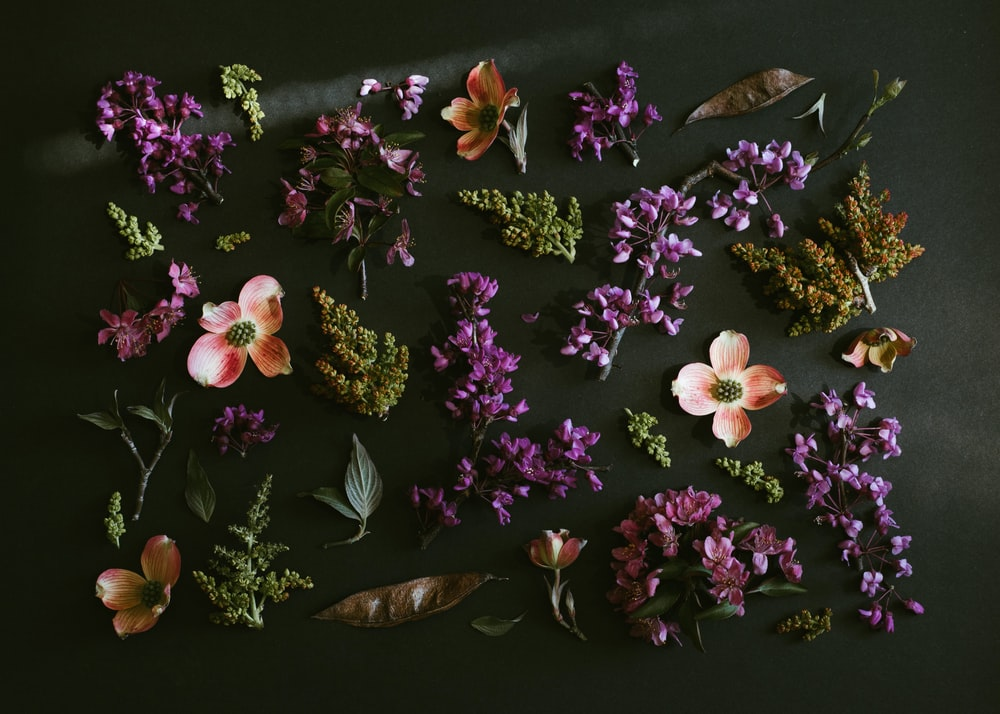purple and white flowers on brown wooden table