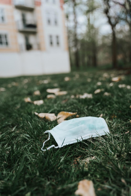 white textile on green grass during daytime