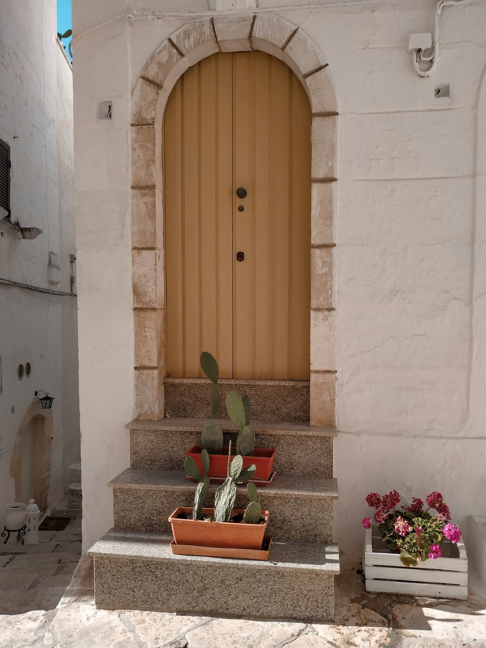 brown wooden door beside pink and white flowers