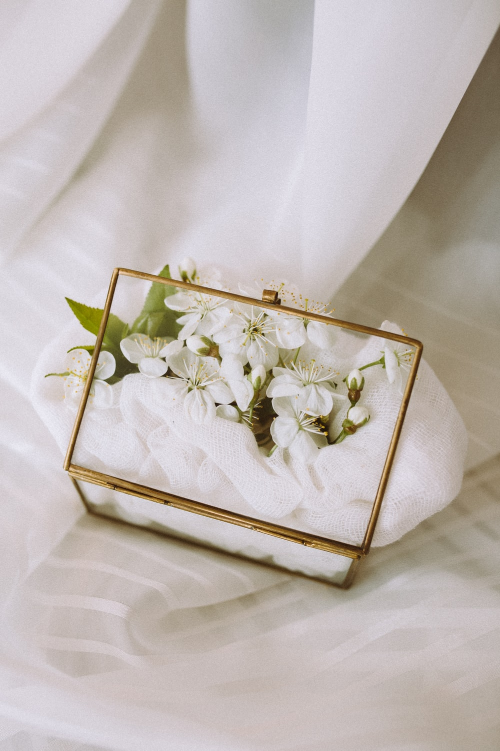 white flowers in gold box