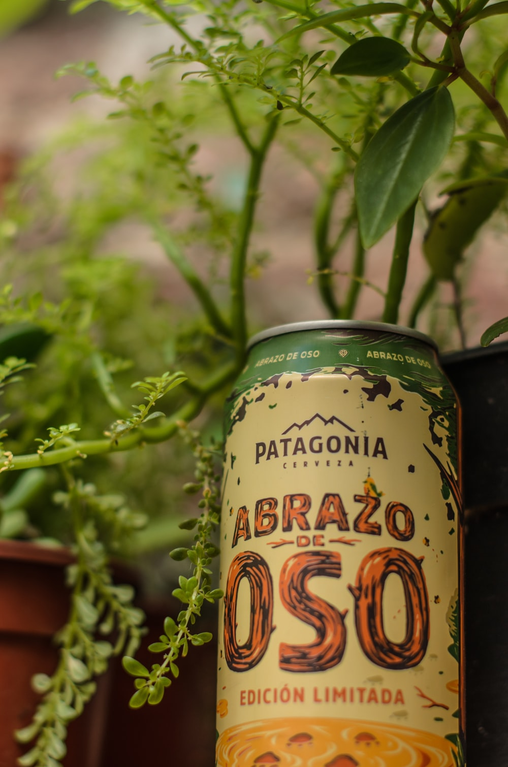 green and yellow labeled can
