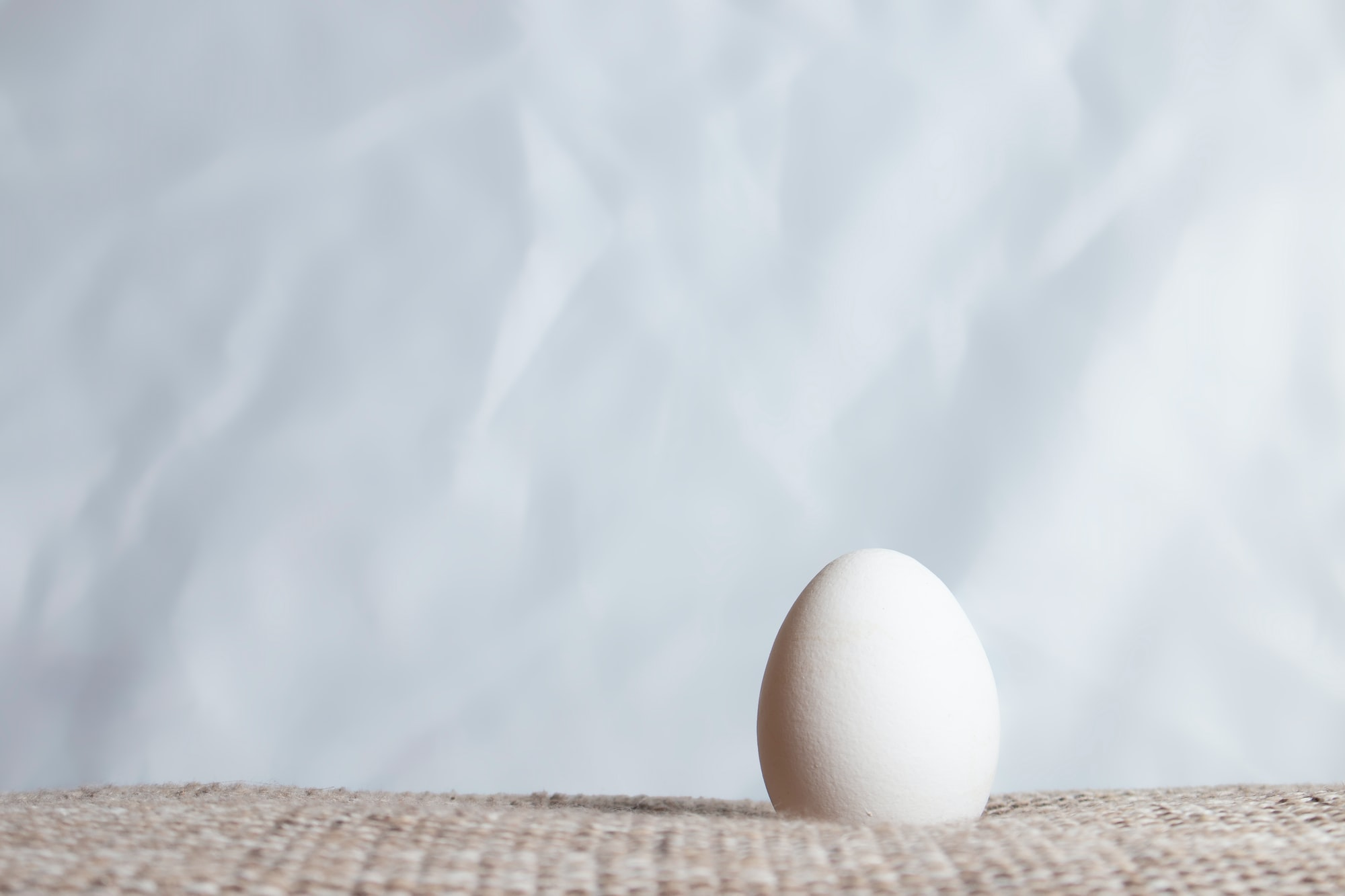 Lonely egg on a soft bottom in front of a crinkled white background