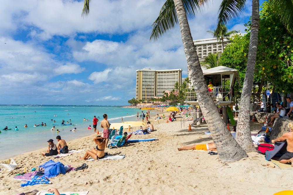 Waikiki Beach Pictures Free