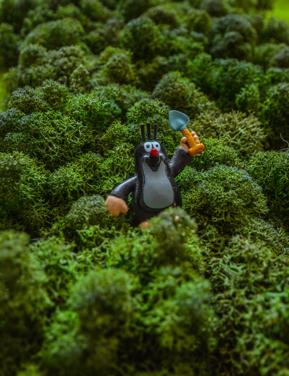 black and brown duck figurine on green grass during daytime