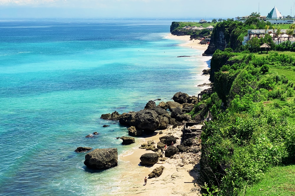 brown rocky shore with green plants and blue sea water during daytime