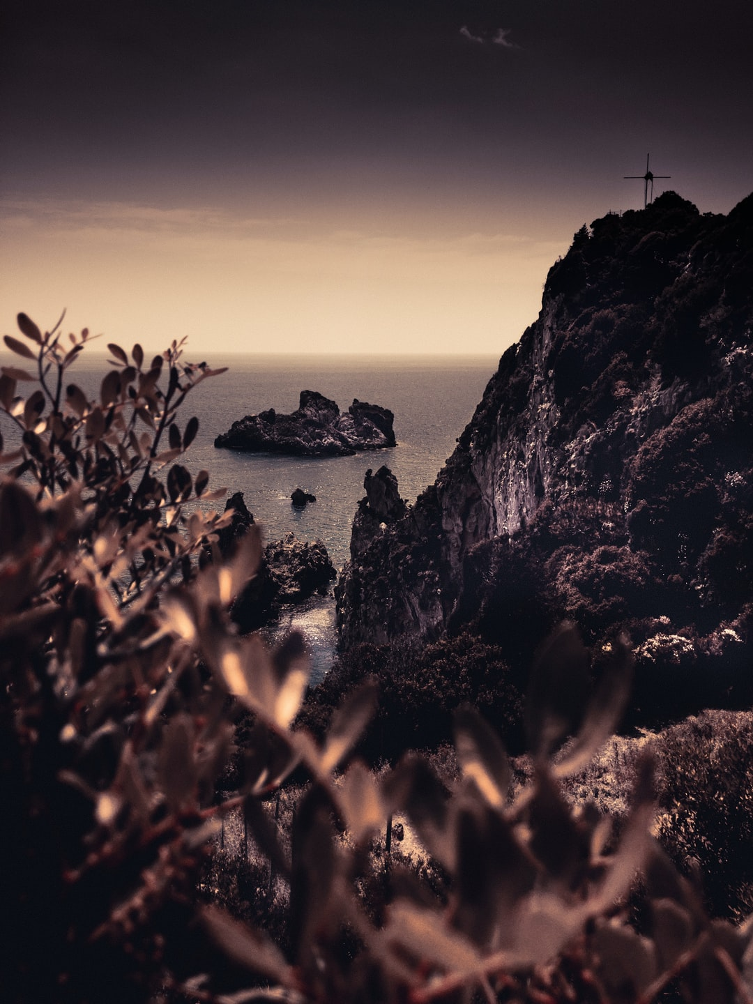 View of the sea in a rocky bay with plants