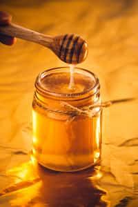 Dandelion honey dandelion stories