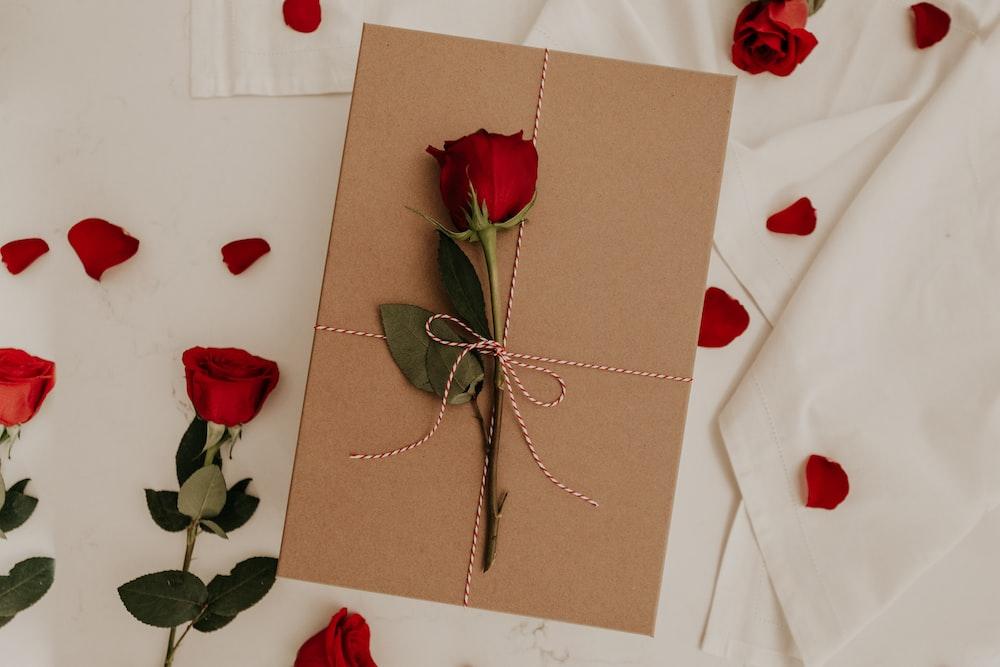 красная роза на коричневом конверте