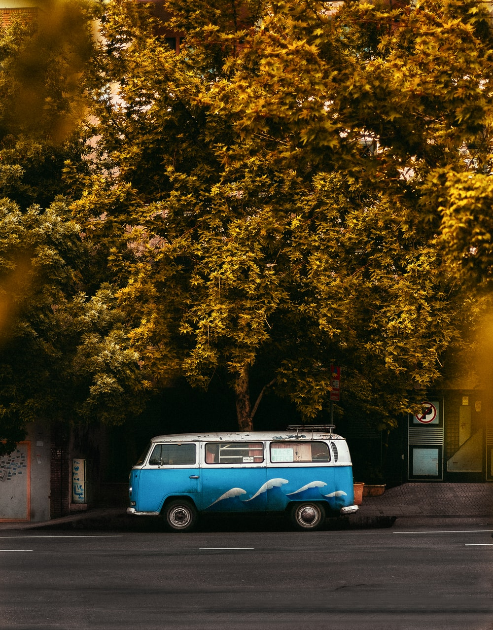 blue and white volkswagen t-2 parked beside green trees during daytime