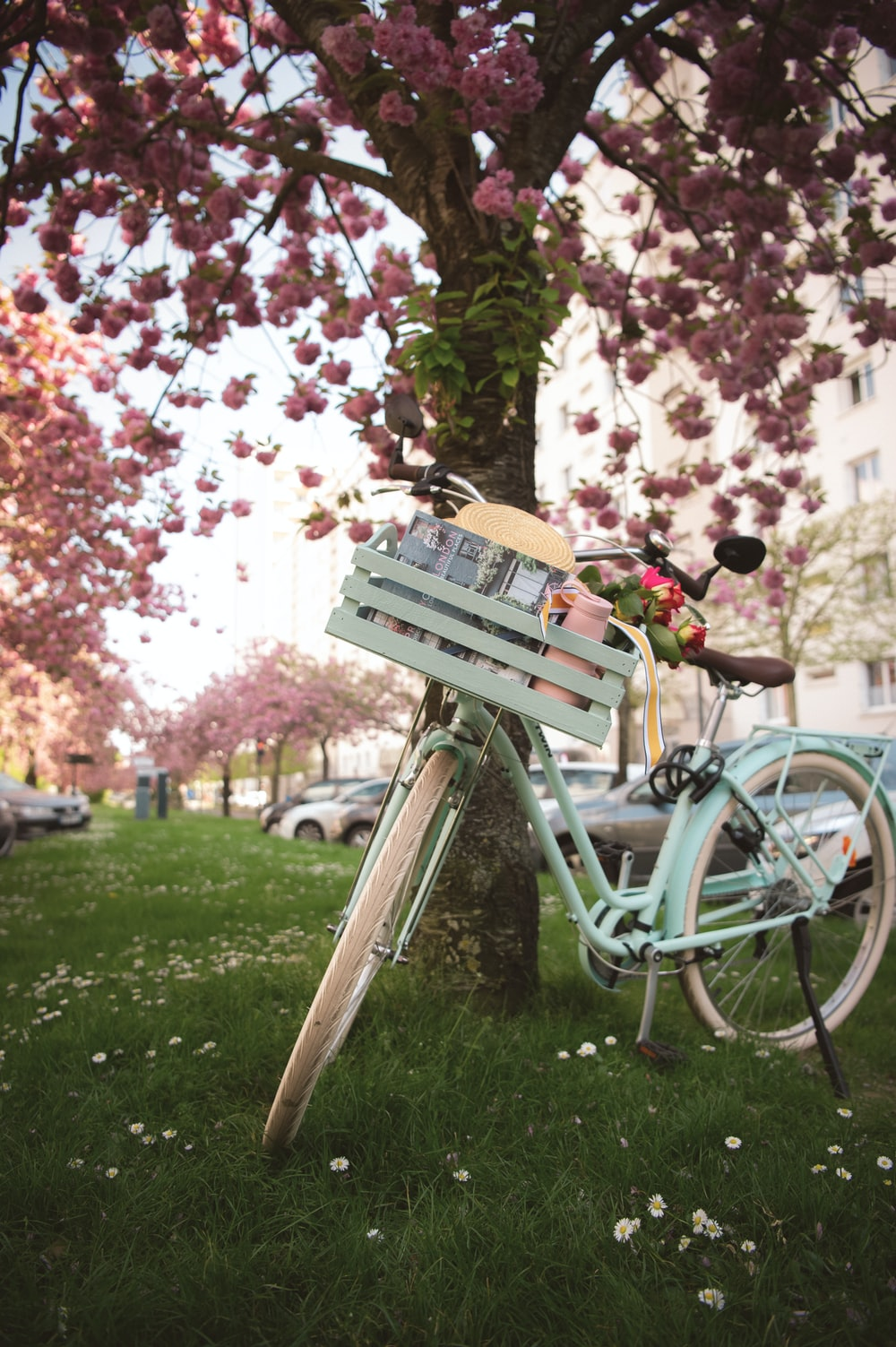 green bicycle on green grass field during daytime