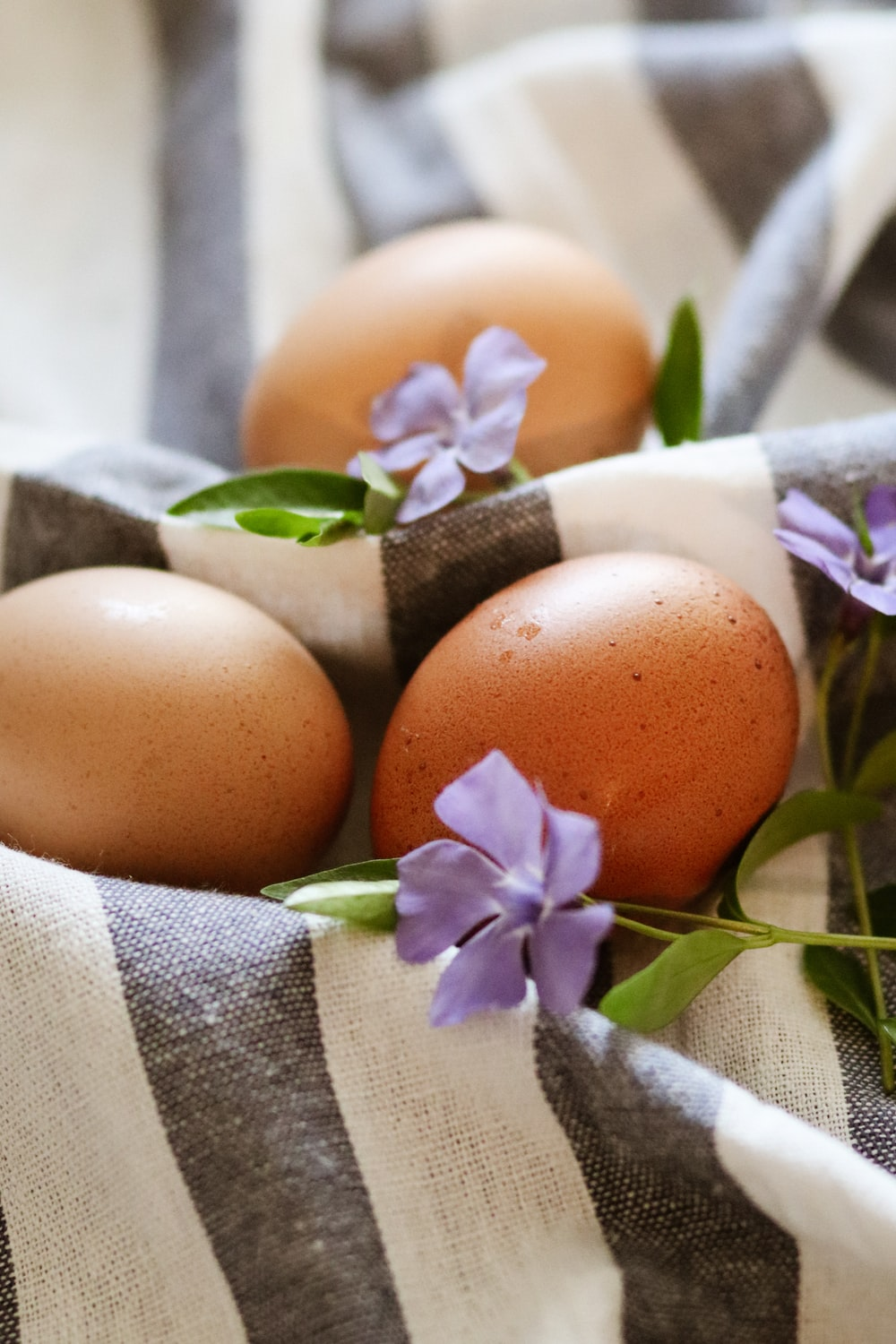 brown egg on white and purple floral textile