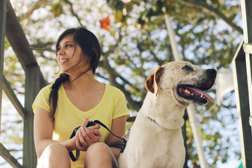 woman in yellow tank top sitting beside white short coated dog