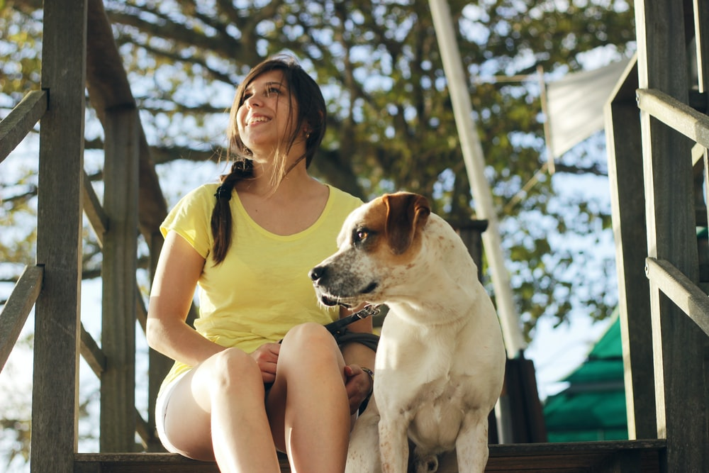 woman in yellow shirt sitting beside white and brown short coated dog