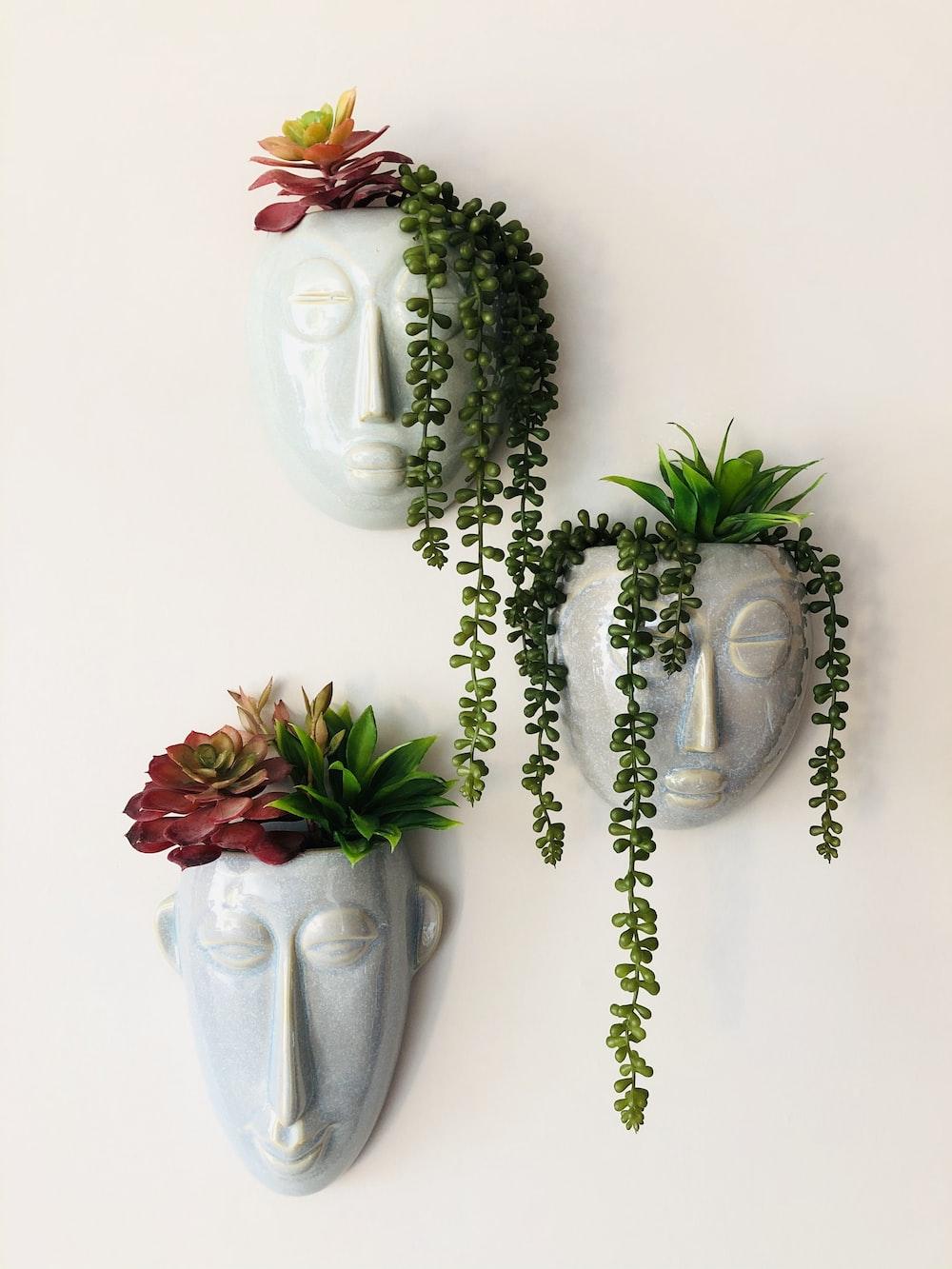 red roses on white ceramic vase