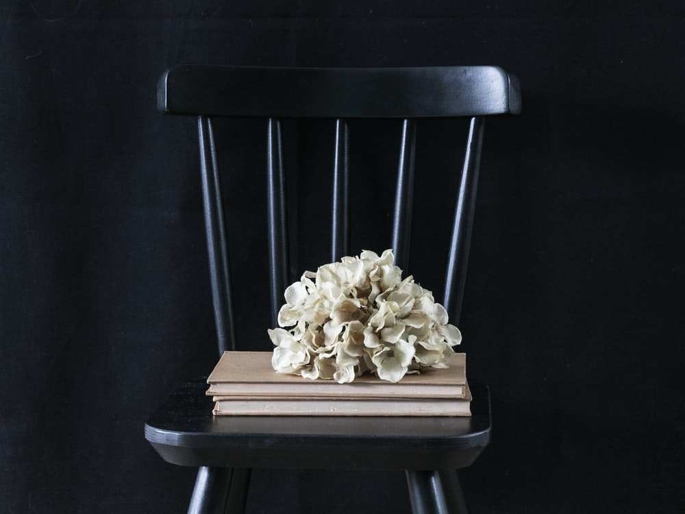 brown wooden chair with white mushrooms