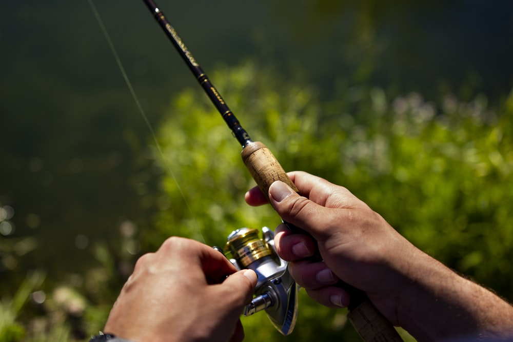 person holding black and gold fishing rod with reel
