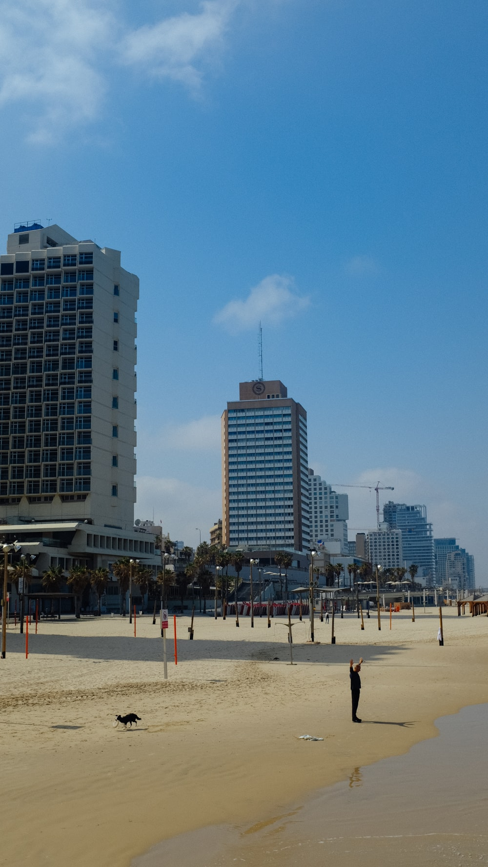 people on beach near high rise buildings during daytime