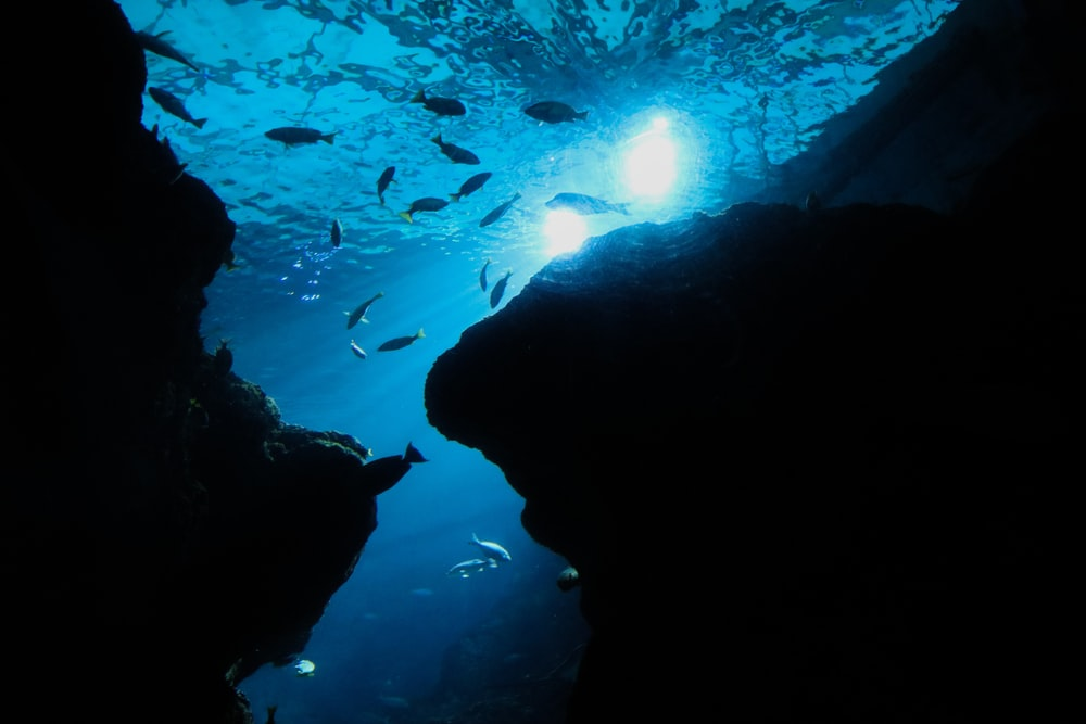 silhouette of people in cave