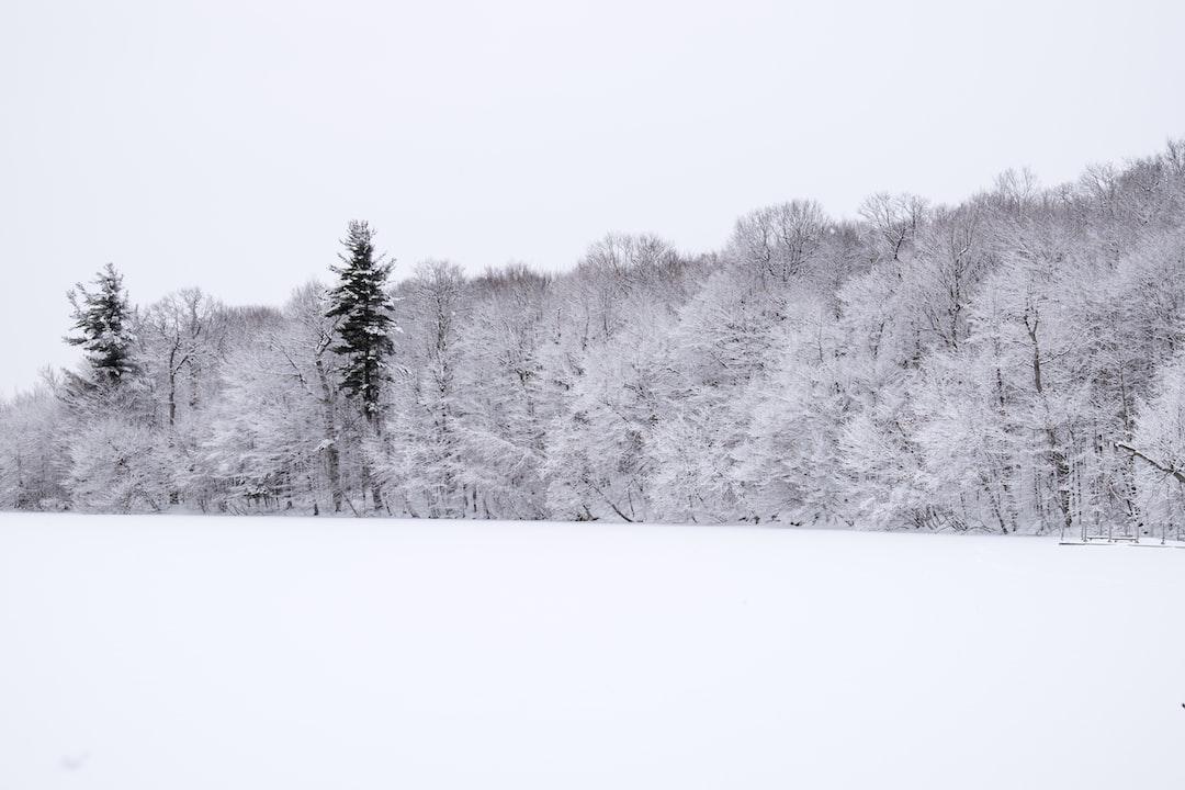Winter landscape after snowstorm