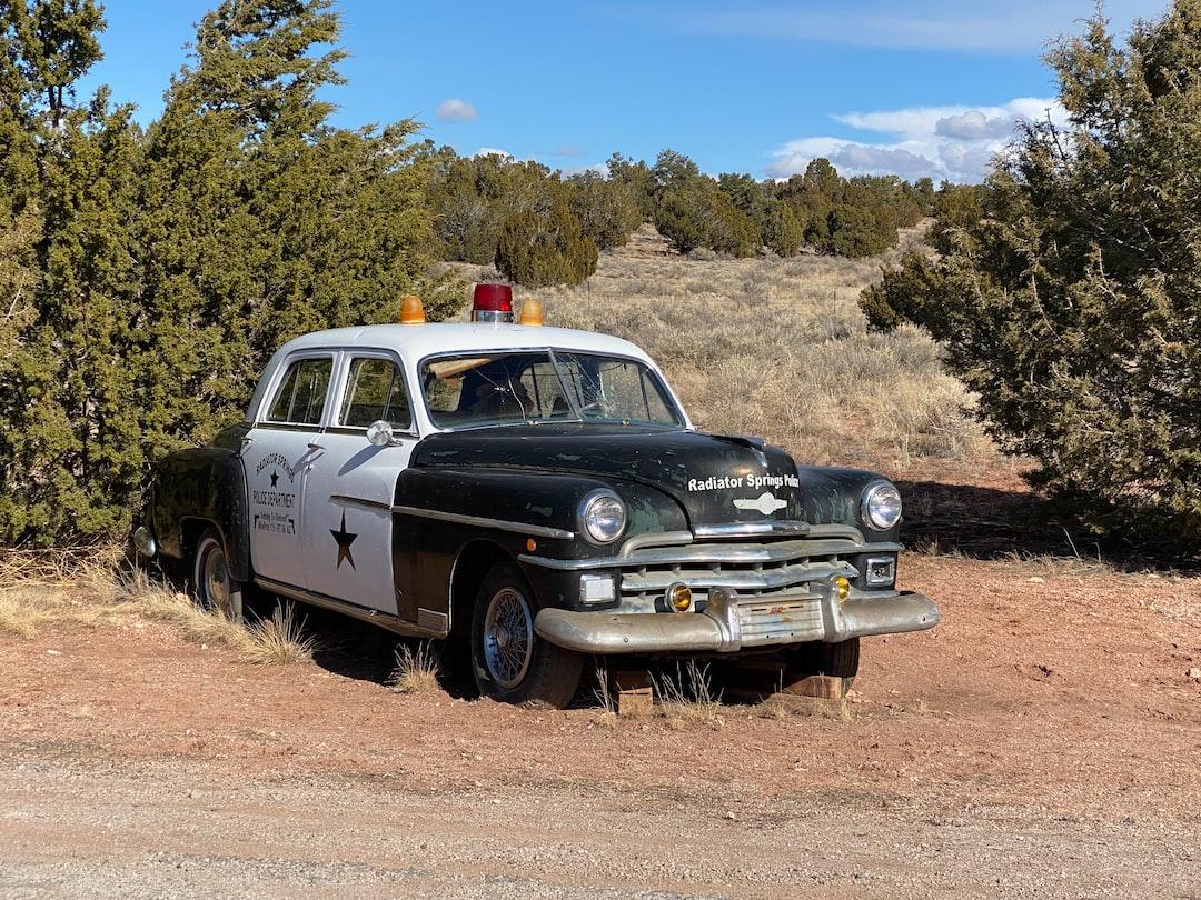Radiator Springs Police Car
