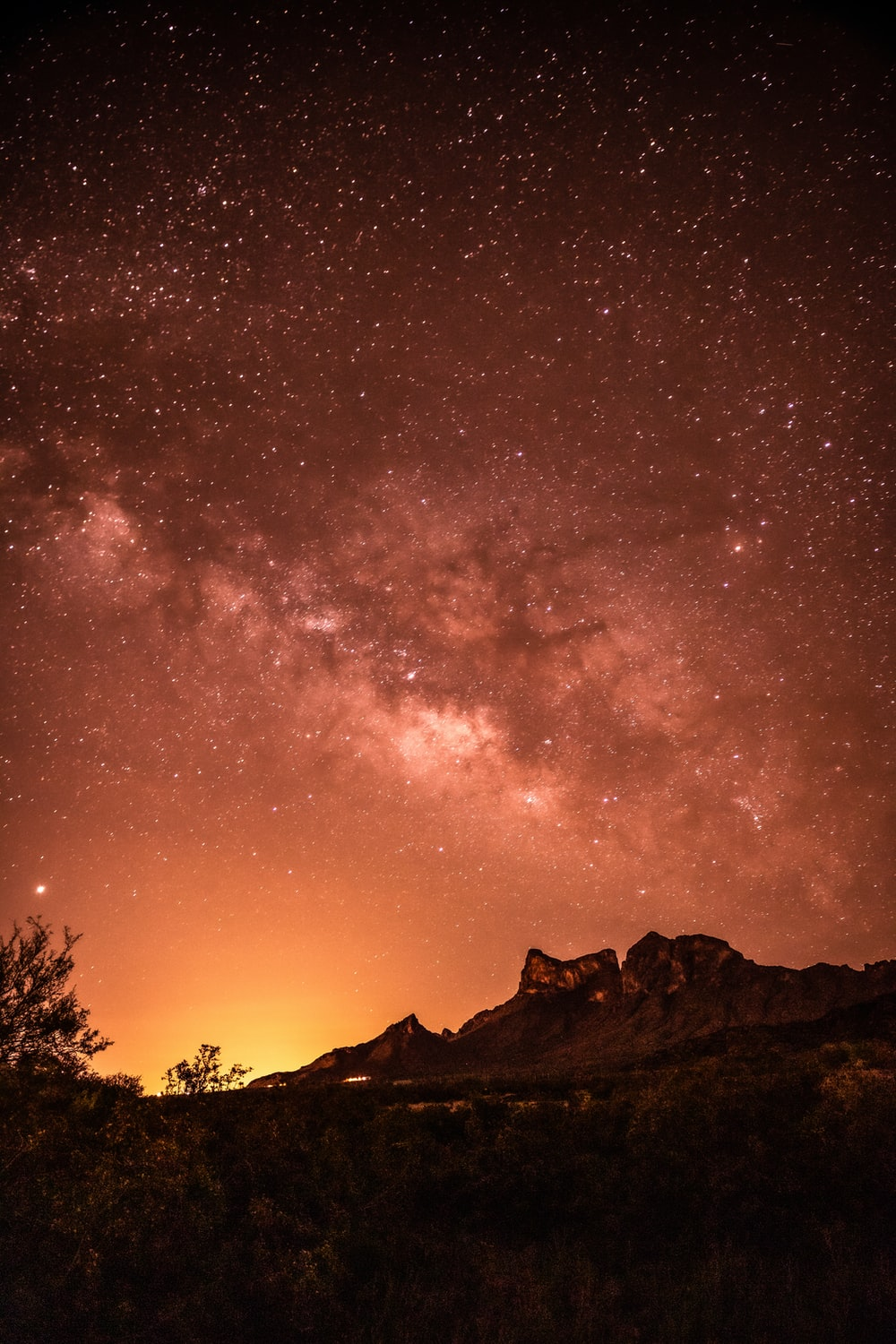 silhouette of trees and mountain under starry night