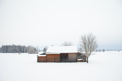 Wood storage and hut in the snow in winter