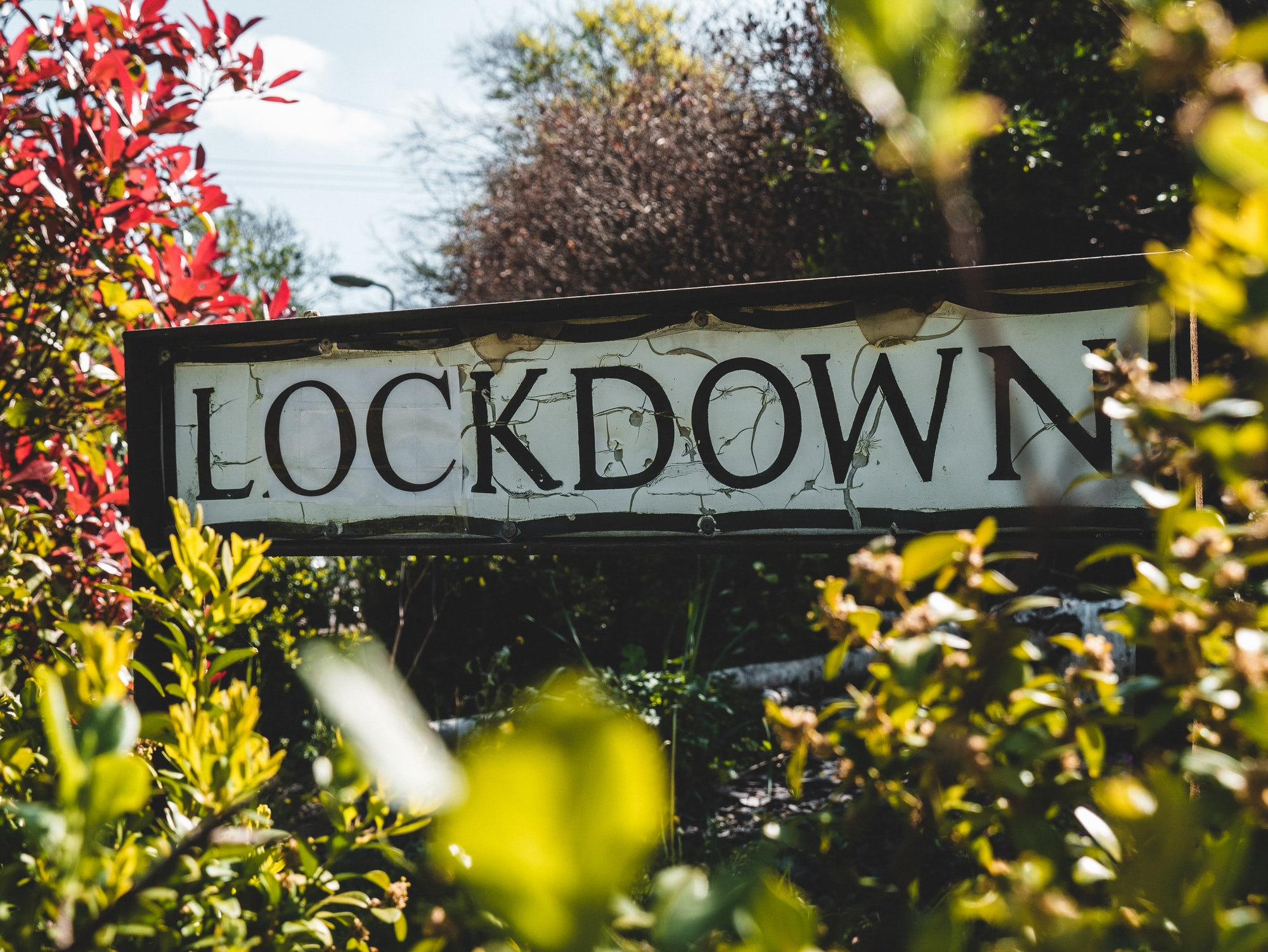 Lockdowns May Never End